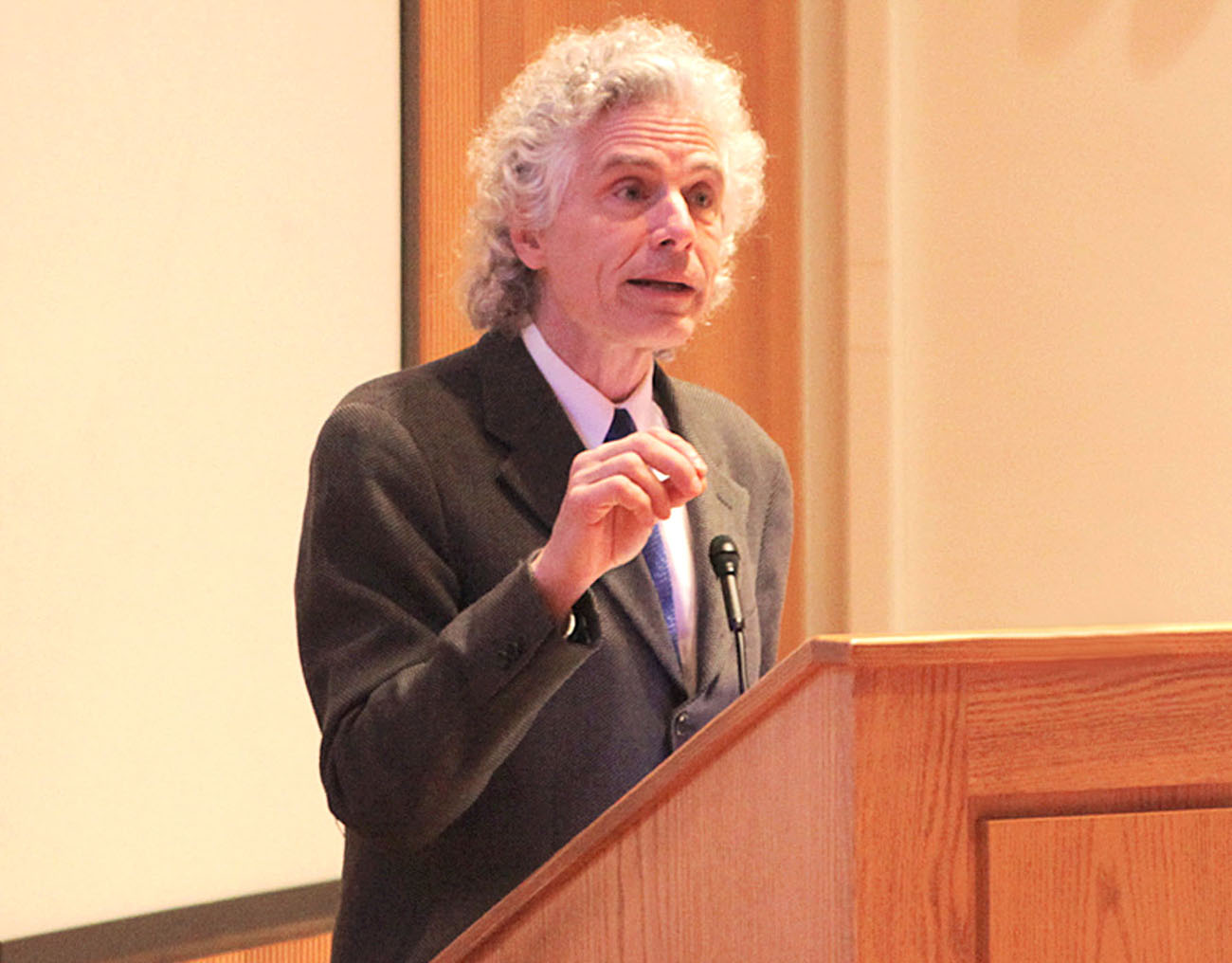 steven pinker violence essay Complete summary of steven pinker's the blank slate enotes plot summaries cover all the significant action of the blank slate.