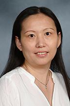 Zhang, Honglei
