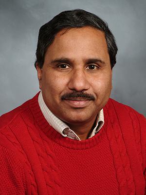Prakash Adekkanattu